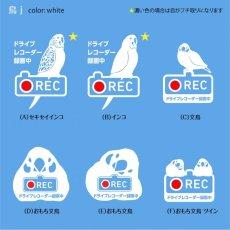 画像2: <Drive Recorder ●REC>カッティングステッカー (インコ・文鳥)  デザイン・英・日メッセージが選べます! (2)