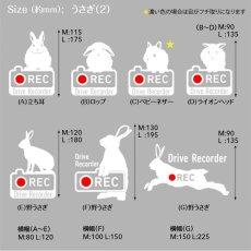 画像4: <Drive Recorder ●REC>カッティングステッカー  うさぎ(2) デザイン・英・日メッセージが選べます! (4)