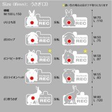 画像3: <Drive Recorder ●REC>カッティングステッカー  うさぎ(3) デザイン・英・日メッセージが選べます! (3)