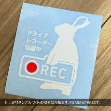画像1: <Drive Recorder ●REC>カッティングステッカー  うさぎ(2) デザイン・英・日メッセージが選べます! (1)
