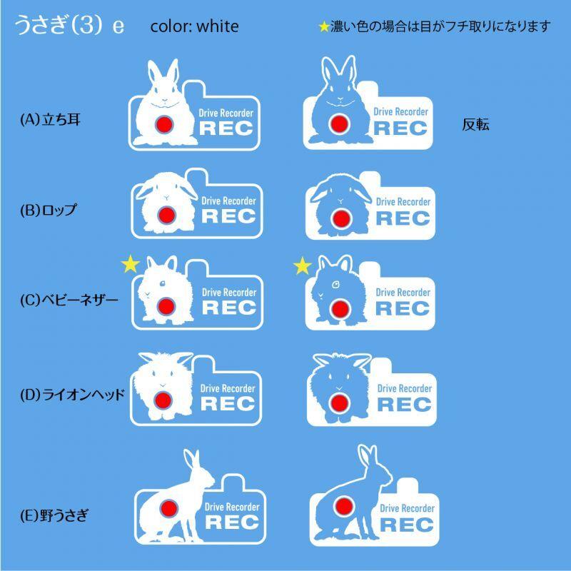画像1: <Drive Recorder ●REC>カッティングステッカー  うさぎ(3) デザイン・英・日メッセージが選べます! (1)